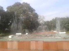 Musical water fountain- Mugal rose Garden,Rashtrapati bhavan New Delhi, Fountain, Musicals, Channel, Rose, Awesome, Garden, Water, Gripe Water