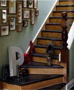 like the black paint on the stairs and natural wood.will be doing this on the basement stairs Stair Treds, Rustic Staircase, Painted Staircases, Painted Stairs, Painted Floors, Black Stairs, House Stairs, Basement Stairs, Basement Ideas