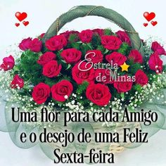 E que os motivos pra sorrir, sejam maiores do que os pra chorar. Christmas Wreaths, Floral Wreath, Dali, Holiday Decor, Good Morning Handsome, Wiser Quotes, Good Night Sweet Dreams, Blue Roses, Being Happy