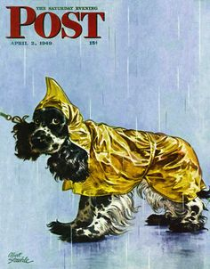 """Giclee Print: """"Butch in Raingear,"""" Saturday Evening Post Cover, April 1949 by Albert Staehle : American Cocker Spaniel, English Cocker Spaniel, Springer Spaniel, Saturday Evening Post, Pop Culture Art, Transformers Art, Butches, Book Cover Art, Animation"""