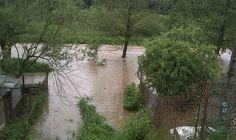 Ploucnice river 2.6.2013