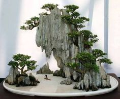 simonsaquascapeblog: Inspiring: Bonsai Fantastic Landscape by Kuanghua Hsiao You can watch more of these breathtaking Bonsai-Art here