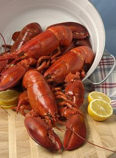 """From """"How to Cook a Lobster"""" story by kaynahbryce14 on Storify — http://storify.com/kaynahbryce/how-to-cook-a-lobster"""