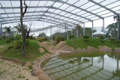 Huge Aviary