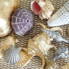 leaf crafts Gilded seashells take the beachy glam look to the next level. You'll never guess how easy it is to make these. Learn two different gilding methods. Oyster Shell Crafts, Oyster Shells, Sea Shells, Seashell Candles, Seashell Crafts, Seashell Art, Metallic Spray Paint, Gold Paint, Metallic Decor