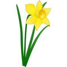 clip art lilly of the valley - - Yahoo Image Search Results