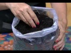 Saiba como preparar terra orgânica e fazer adubação - YouTube