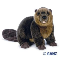 WEBKINZ SIGNATURE BEAVER In Stock Now! New with sealed code