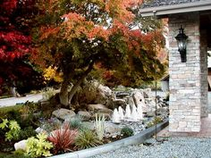 Garden Photos - Pictures of flowers and beautiful landscapes : HGTV Garden Galleries : Home & Garden Television