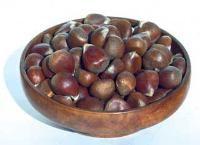 Chestnut Seedling Pollinator - Additional Nut Trees - Stark Bro's