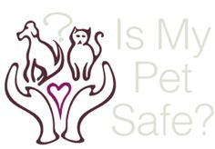 Travel Crates - Pet Safety Theater! | Is My Pet Safe?