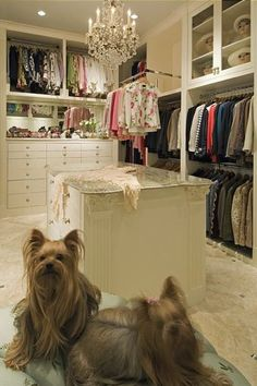 Walk in closet ideas - walk in closet accessories - small walk in closet - clothes organizing - wardrobe design ideas