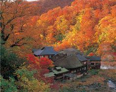 Japan travel destinations - Tohoku