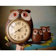 Bring the outdoors inside with these adorable owl clocks!