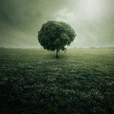 Leszek Bujnowski's Photography