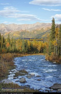 RailPictures.Net Photo: ARR 4324 Alaska Railroad EMD SD70MAC at Denali Park, Alaska by Emily Moser / HarlemLine.com