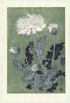Benji Asada (1899 - 1984) Japanese Woodblock Print , Poppy
