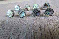 Abalone Stud Earrings Paua Shell post earrings silver 12 mm