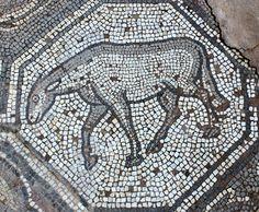 Sheep, Delphi, Greece. 5/6th Century AD. http://helenmilesmosaics.org/mosaic-sites/mosaics-of-delphi/