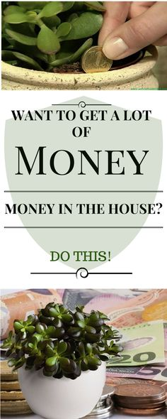 WANT TO GET A LOT OF MONEY IN THE HOUSE? DO THIS!