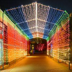 look at these pretty lights – colors makes us happy especially when sunshine is on a break for few days :) #Festivities #MerryChristmas #HappyChristmasEve #HappyLongWeekend #Pretty #Evening #Colors #Lovely #HolidaySeason #HolidayLights #LincolnPark #ZooLights #December2016 #Winter2016 #SaturdayEvening #Chicago
