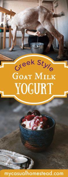 My kids are yogurt fiends! I've been feeding plain Nancy's yogurt to the kids since they were little. As they got older I threw in my Homemade Maple Granola and fresh berries, apples, o… Yogurt Maker, Yogurt Cups, Yogurt Diy, Homemade Yogurt, Homemade Cheese, Goat Milk Recipes, Yogurt Recipes, Charcuterie, Easy Recipe To Make At Home