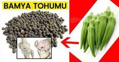 Dizlerdeki Sıvı Kaybına Bamya Tohumu Kids Around The World, Diet And Nutrition, Asparagus, Green Beans, Health Fitness, Food And Drink, Weight Loss, Skin Care, Vegetables