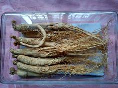 $18.90 (Buy here: https://alitems.com/g/1e8d114494ebda23ff8b16525dc3e8/?i=5&ulp=https%3A%2F%2Fwww.aliexpress.com%2Fitem%2F100g-dried-Ginseng-Root-6-years-Changbai-Mountain-Panax-Ginseng-Vacuum-Packing-enhance-immunity-herb-heath%2F32669594052.html ) 100g dried Ginseng Root 6 years Changbai Mountain Panax Ginseng Vacuum Packing enhance immunity herb heath ginseng for just $18.90