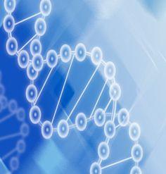 Os tumores mais frequentemente associados a alterações genéticas hereditárias são: câncer de mama, câncer de cólon (intestino grosso) e reto, câncer de ovário e câncer de tireóide.