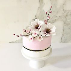Colour Blocking with Spring Sugar Flowers - cake by Tammy Iacomella