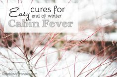 Are the frigid temps keeping you cooped up, causing you to feel a little stir-crazy?  Here are some easy (and cheap!) ways to help you overcome end-of-winter cabin fever! -- by Little Bits of Granola