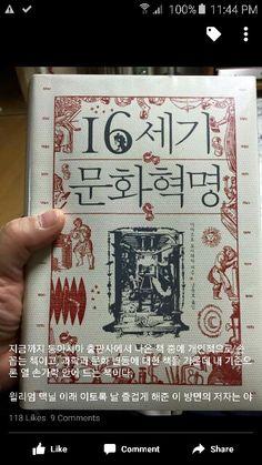 16세기 문화혁명