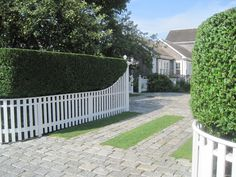 Nantucket Belgian block driveway with clipped privet hedge for gus area Garden Hedges, Garden Fencing, Fence Design, Garden Design, Nantucket Style Homes, Concrete Backyard, Country Fences, Privacy Plants, Driveway Landscaping