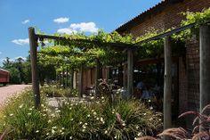 Bodega Bouza, Uruguay