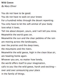 Wild Geese by Mary Oliver. Thank you, Mr. Owens, for giving me the gift of this poem so many years ago. It is one I have always cherished.