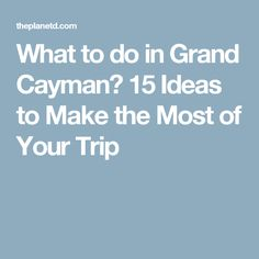 What to do in Grand Cayman? 15 Ideas to Make the Most of Your Trip