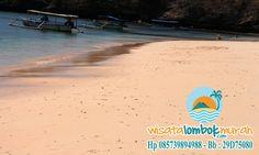 Objek wisata Pantai Pink Lombok yang memikat.  Keindahan alam yang luar biasa guys. Ayo kunjungi di jamin gak nyesel deh guys... http://wisatalombokmurah.com/menakjubkan-ini-salah-satu-wisata-pantai-lombok-yang-unik/  #pantaipinklombok