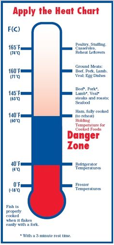 Food Safety for Moms-to-Be - Apply the Heat: A chart of proper cooking temperatures for foods.