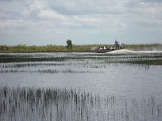 The Everglades and Miami Adventure Tour by Gray Line Orlando Tours takes you on an adventure on an airboat ride through the famous everglades and scenic locations throughout Miami Airboat Rides, Miami, Tour Tickets, Adventure Tours, Niagara Falls, Orlando, United States, Waves, Park