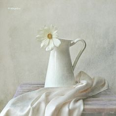 Still Life With White Flower Art Print by By Margoluc. All prints are professionally printed, packaged, and shipped within 3 - 4 business days. Choose from multiple sizes and hundreds of frame and mat options. Still Life Drawing, Painting Still Life, Still Life Art, High Key Photography, Still Life Photography, White Photography, Animal Photography, Nature Photography, Travel Photography