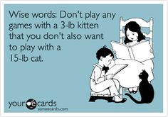 Wise words: Don't play any games with a 3-lb kitten that you don't also want to play with a 15-lb cat.