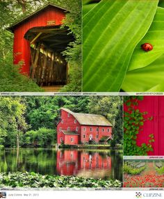Red + Green