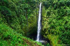 Akaka (Havaí) - Apesar da cachoeira de Akaka ter mais de duas vezes a altura das Cataratas do Niágara, a caminhada até ela é relativamente fácil. Na verdade, é uma das cachoeiras mais acessíveis do mundo. O caminho é feito através de trilhas que passam pelas folhas de bananeira e figueiras em um contato inesquecível com a natureza.