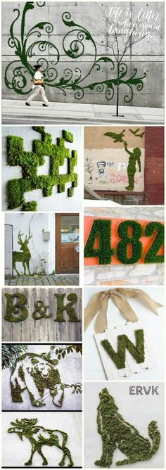 Moss graffiti, or how to bring art to its most natural state.