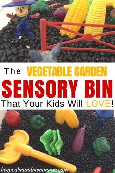Vegetable Garden Sensory Bin, Sensory Bin Ideas, Sensory Activities, Crafts For Kids, Activities For Toddlers, Activities For Preschoolers