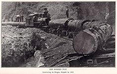A picture from History of Oregon by Joseph Gaston, showing the modern way of logging; the book was published in 1911.