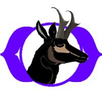 Third Eye Chakra Animal Symbol. balancedwomensblog.com