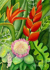 Heliconia Paintings - Tropical Flowers 2  by Judy Kimmel