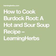How to Cook Burdock Root: A Hot and Sour Soup Recipe – LearningHerbs