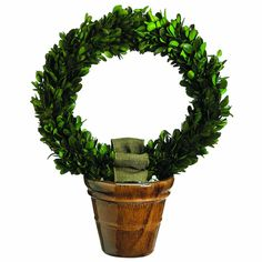Bring a bit of the garden's glory into the interior without having to worry about watering plants. This preserved boxwood wreath topiary adds an elegant earthy accent. Boxwood Wreath, Grapevine Wreath, Preserved Boxwood, Water Plants, Topiary, Preserves, Grape Vines, Earthy, Christmas Wreaths